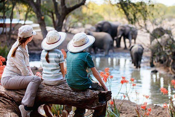 Family-Safari