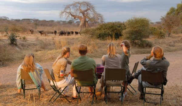 family-safari-jongomero-camp-game-